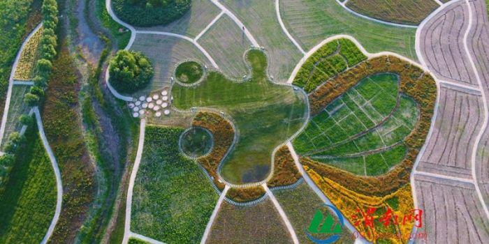 渭南:无人机下渭河大堤夏天的色彩和图案(组图)
